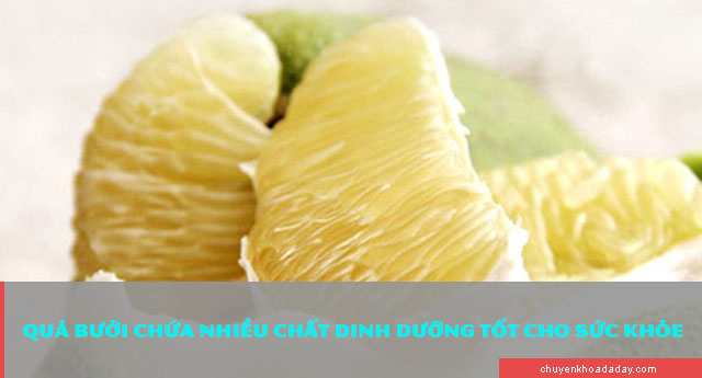 Bưởi là loại trái cây chứa nhiều chất dinh dưỡng tốt cho sức khỏe