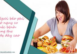 Người béo phì - thừa cân thường có nguy cơ mắc bệnh ung thư dạ dày cao