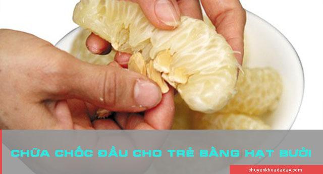 Hạt bưởi có tác dụng trong điều trị nhiều loại bệnh