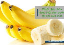 Trong chuối chín có chứa nhiều chất dinh dưỡng tốt cho sức khỏe con người