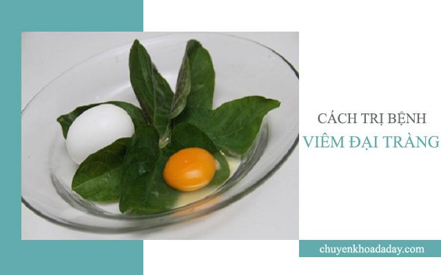 Ăn trứng rán lá mơ lông thường xuyên có thể chữa được bệnh viêm đại tràng
