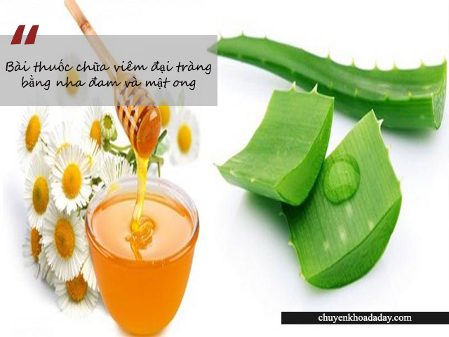 Bài thuốc kết hợp nha đam và mật ong chữa đau dạ dày