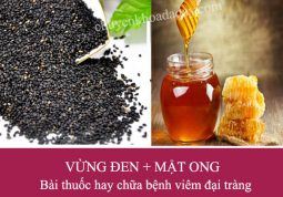 Bài thuốc chữa viêm đại tràng từ hạt vừng đen và mật ong