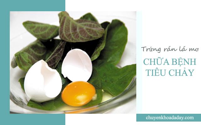 Ăn món trứng rán lá mơ lông chữa bệnh tiêu chảy