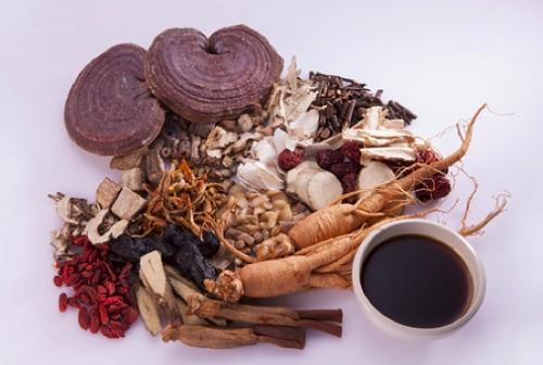 Bài thuốc Đông y chữa bệnh đau dạ dày