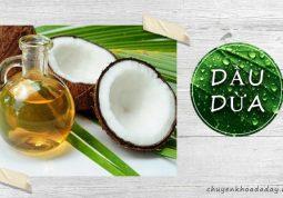 Dầu dừa có nhiều công dụng chữa bệnh khác nhau