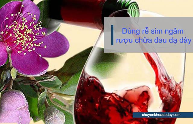 Dùng rễ sim ngâm rượu chữa đau dạ dày