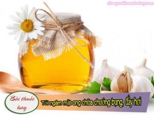 Tỏi ngâm mật ong là bài thuốc chữa chứng đầy hơi chướng bụng rất hiệu nghiệm