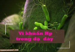 Vi khuẩn Hp trong dạ dày