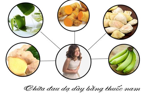 chữa đau dạ dày bằng thuốc nam