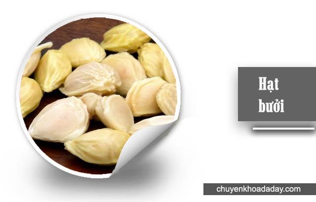 chữa đau dạ dày bằng hạt bưởi
