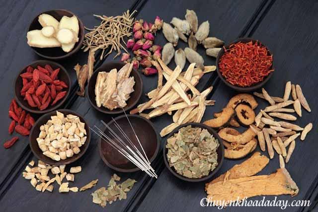 Đông y trị viêm loét dạ dày