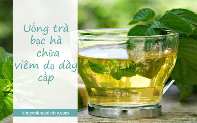 Uống nước lá bạc hà chữa bệnh viêm dạ dày cấp