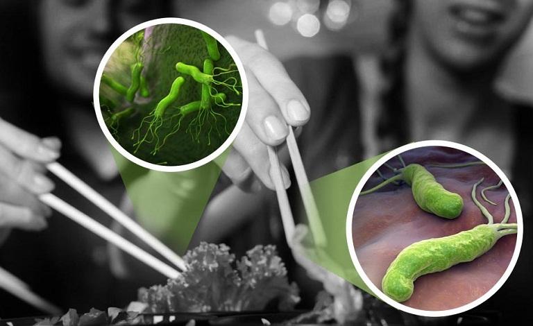 Dạ dày nhiễm vi khuẩn HP từ thức ăn