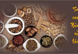 Dạ dày nhiễm vi khuẩn HP – Mối nguy hại gây ung thư dạ dày