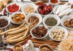thuốc đông y chữa đau dạ dày